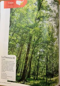 La Potencia III is land for sale in Marengo County Alabama by Jonathan Goode