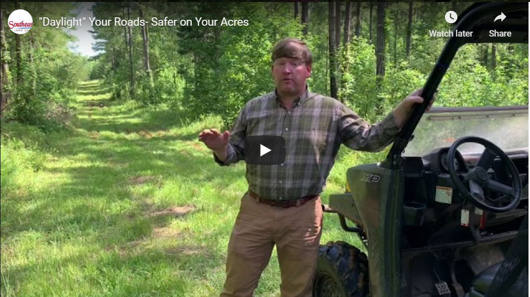 Daylight Your Roads- Land For Sale in Alabama Jonathan Goode